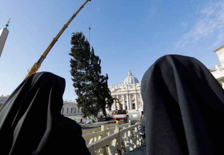 Será decorado y las luces que le pondrán serán prendidas el 7 de diciembre con una ceremonia. (Excelsior)