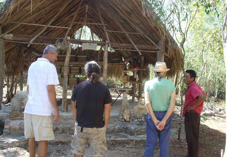 El presidente de la Fundación Melipona Maya dijo que esta actividad está en crecimiento. (Sara Cauich/SIPSE)