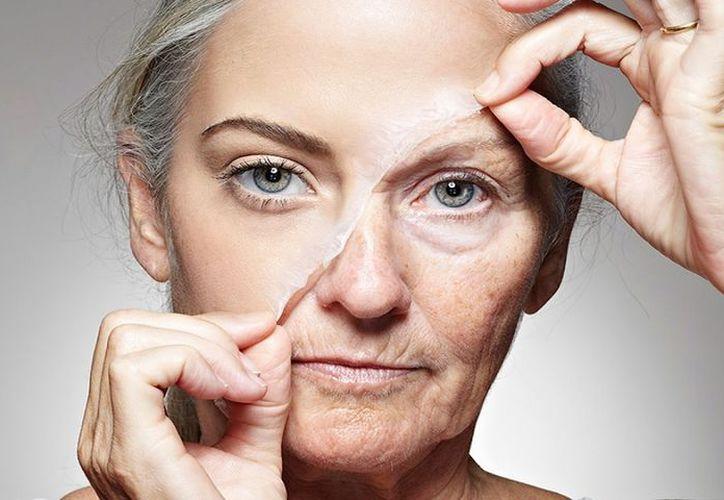 Existen alimentos los cuales cuyas propiedades ayudan a regenerar tu piel de una manera increíble. (Foto: Contexto)