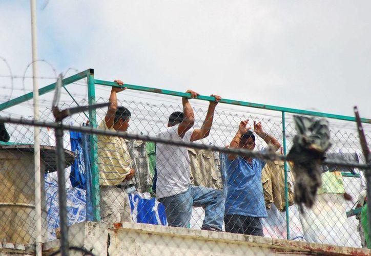 Buscan evitar que más de 84 mil reos sean potenciales criminales desde el interior de los penales.(proceso.com.mx)