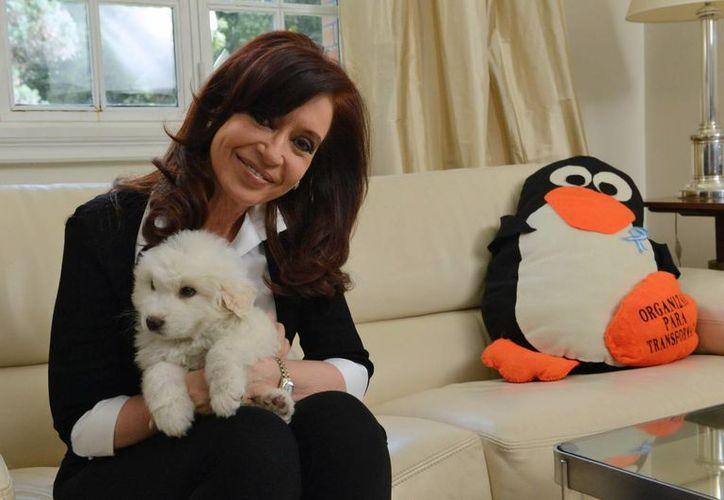 """Cristina Fernández, mientras posa para una fotografía con su nuevo perro """"Simón"""" y un pingüino de peluche gigante, animal que representa a los kirchneristas. (EFE)"""