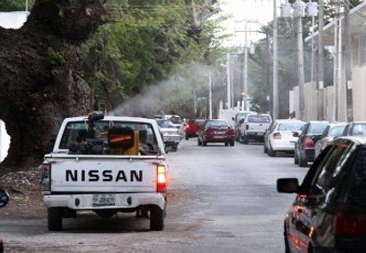 La SSE ha realizado labores de fumigación contra el mosco. (Milenio Novedades)