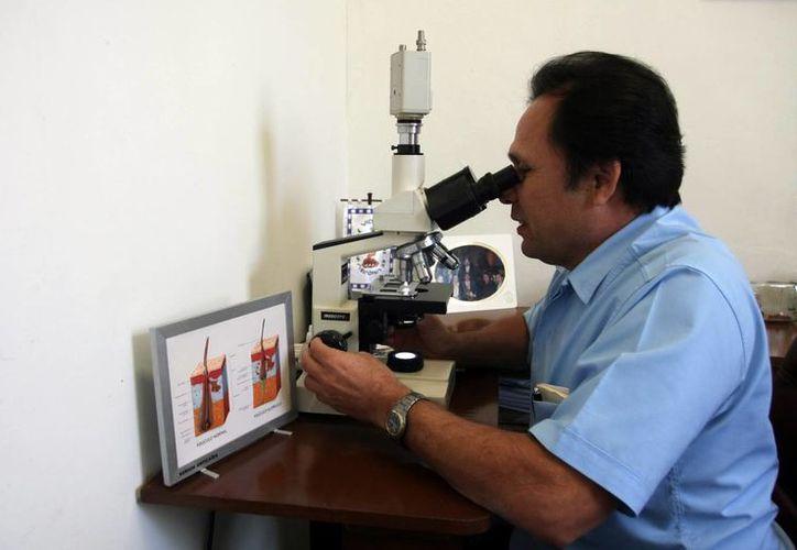 José Cerón Espinosa, director del Centro Dermatológico de Yucatán, dijo que la Organización Mundial de la Salud ha elaborado un tratamiento internacional para curar la lepra. (Milenio Novedades)