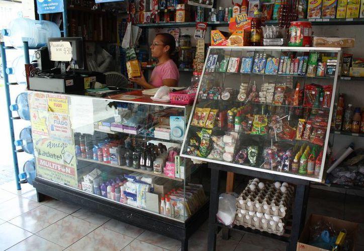 El proyecto se enfoca a microempresas y pequeños negocios. (Israel Leal/SIPSE)