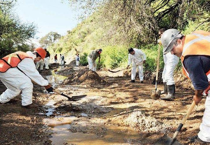 Obreros tratan de limpiar el Río Sonora, sobre el que se vertieron por accidente 40 mil metros cúbicos de ácido sulfúrico. (excelsior.com.mx)