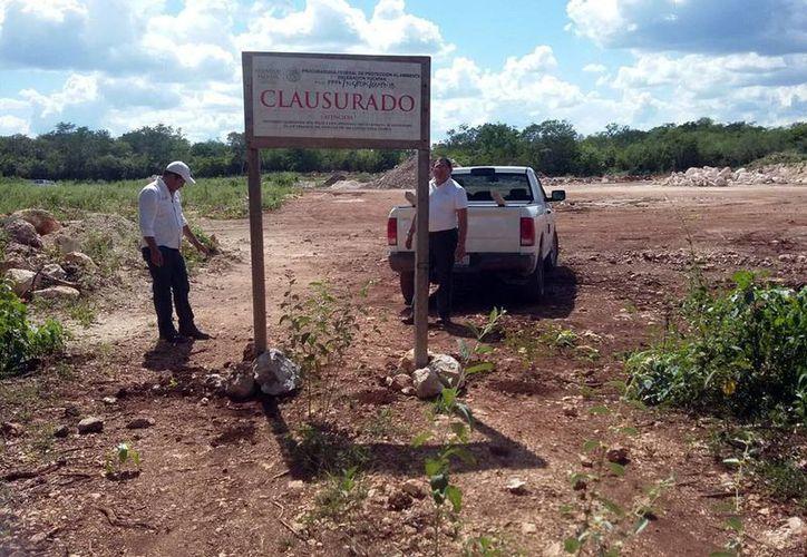 La Procuraduría Federal de Protección al Ambiente ha frenado varios proyectos inmobiliarios, como el de la imagen. (Milenio Novedaes)