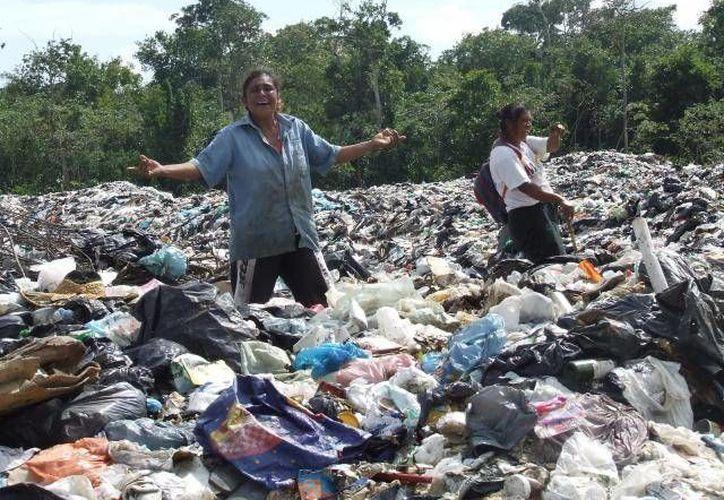 El SAT retendrá un 5.0% del ISR al valor del volumen de compras anuales en el área de reciclaje. (Archivo/SIPSE)
