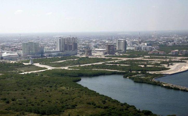 Así lucía la zona de Malecón Tajamar antes de la última remoción de vegetación, realizada este mes. (Israel Leal/SIPSE)