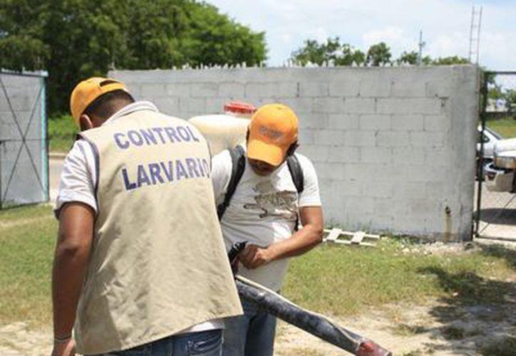 La Sesa invertirá seis millones de pesos en las campañas de prevención y combate del estado. (Archivo/SIPSE)