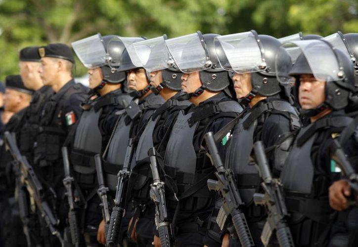 Fuerzas armadas se unen para proteger a la ciudadanía. (Milenio Novedades)