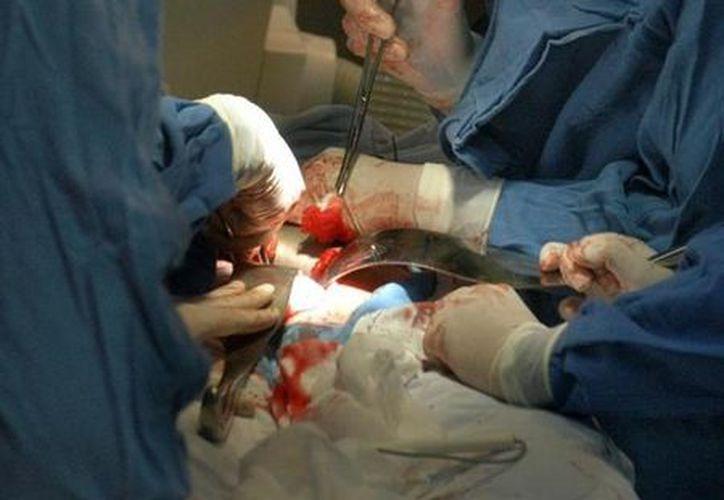 """En el Hospital Infantil de México """"Federico Gómez"""" se efectúan cada año entre 40 y 50 trasplantes de órganos. (Archivo SIPSE)"""