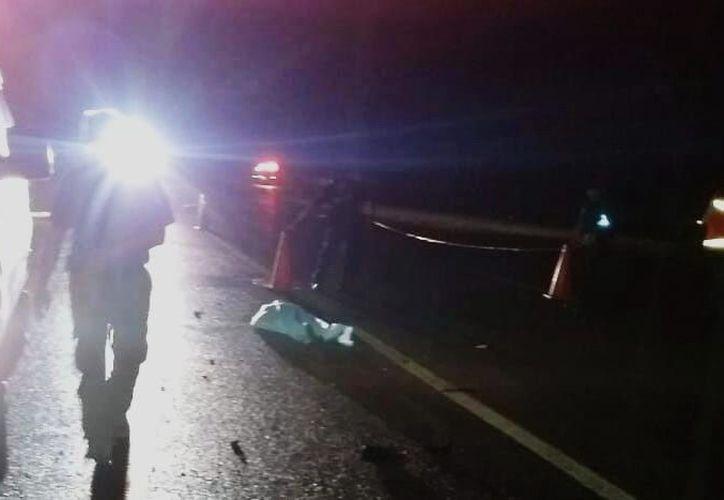 El cadáver del infortunado peatón quedó en medio de la carretera. (Foto: Milenio Novedades)