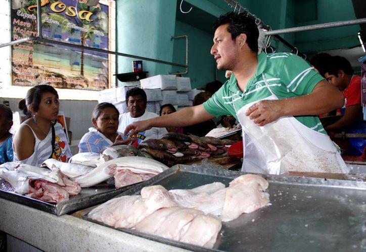 En el Estado se puede encontrar pescado cualquier época del año. (Juan Albornoz/SIPSE)
