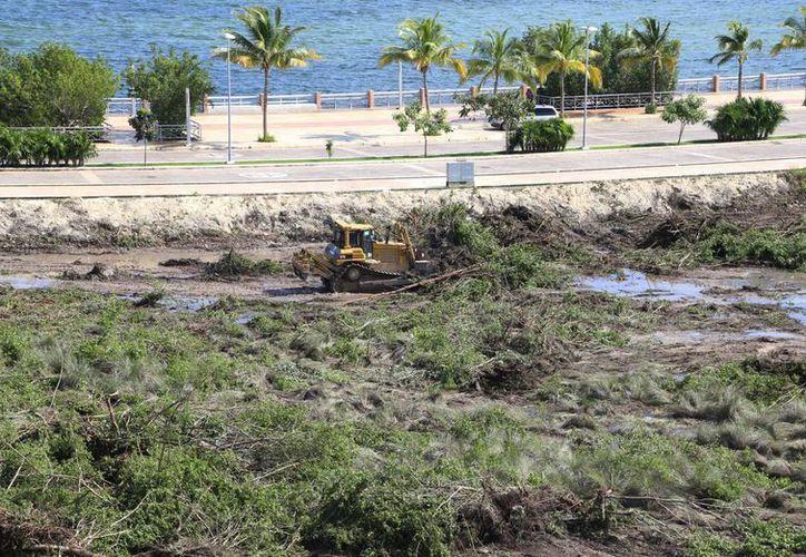 El proyecto turístico inmobiliario de 70 hectáreas, colinda con la laguna Nichupté y la zona de manglares del mismo nombre. (Luis Soto/SIPSE)