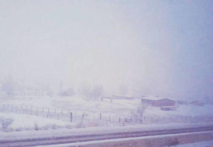 Imagen de una nevada en días pasados en Cuauhtémoc, Chihuahua. (@webcamsdemexico)