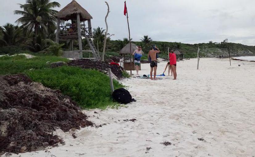 Los hoteleros invierten en la limpieza de las playas. (Redacción/SIPSE)