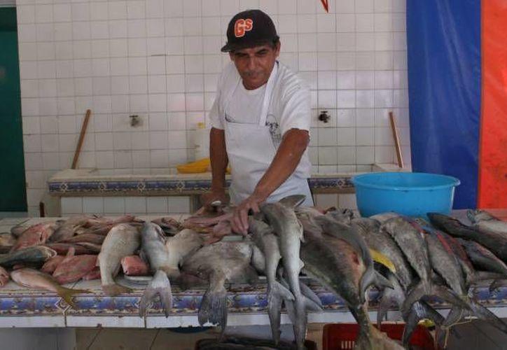 Las pescaderías reportan disminución en ventas. (Israel Leal/SIPSE)