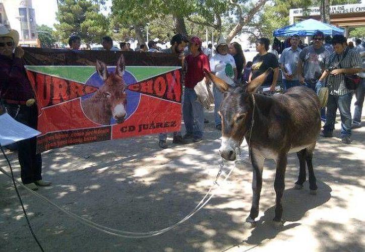 El Burro Chon salió el domingo a las calles de Ciudad Juárez. (Facebook)