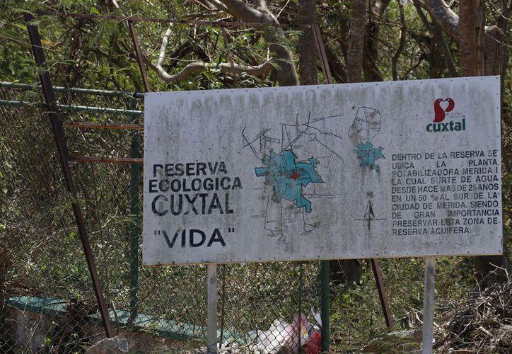 El presupuesto otorgado a la Reserva Ecológica de Cuxtal para el ejercicio fiscal 2017-2018, fue de un millón 300 mil pesos y esperan que se incremente a dos millones de pesos.
