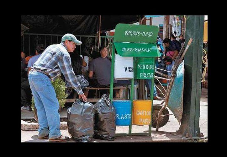 En Cherán, la basura se separa en seis categorías y no solo en orgánica e inorgánica, como en la mayoría de las ciudades. (Jorge Carballo/Milenio)