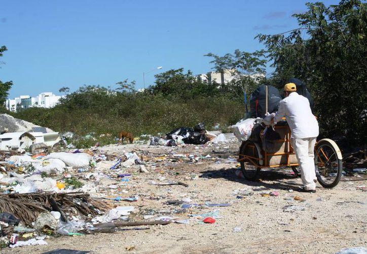 En el fraccionamiento Villa Maya se ubicó el que podría ser el tiradero clandestino más grande de Playa del Carmen. (Octavio Martínez/SIPSE)