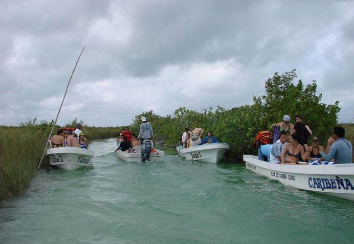 Algunas cooperativas locales han sido capacitadas para prestar servicios en la zona protegida. (Manuel Salazar/SIPSE)