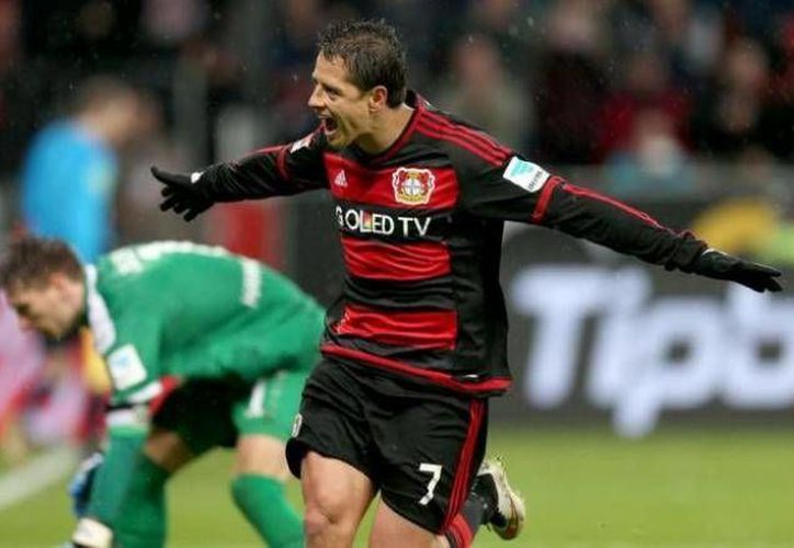 Javier Hernández sigue enrachado con el Bayer Leversuken, tras colaborar con dos anotaciones en la victoria de las 'aspirinas' 3 a 0 frente al Hannover. (AP)