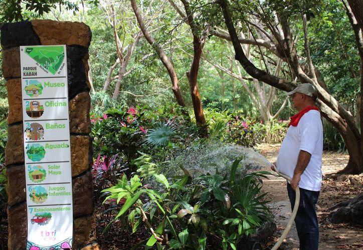 El Parque Urbano Kabah de Cancún tendrá su plan de manejo como Área Natural Protegida. (Yahajira Valtierra/SIPSE)
