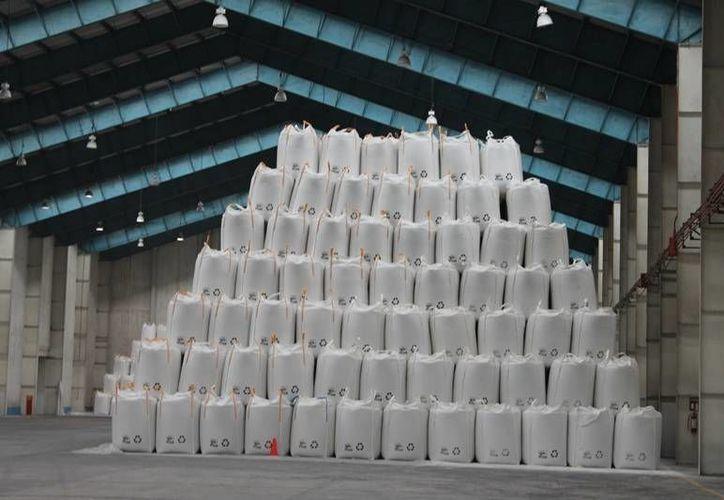 El sobrecupo de azúcar estará mermando la producción de caña. (Edgardo Rodríguez/SIPSE)