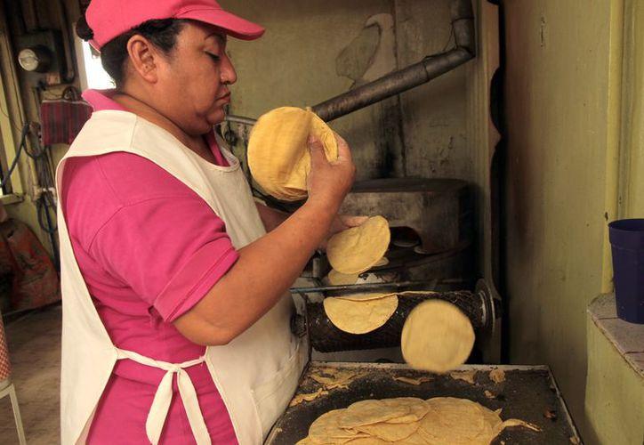 Los molineros compran harina de maíz de Campeche y Sinaloa. (Foto: Milenio Novedades)