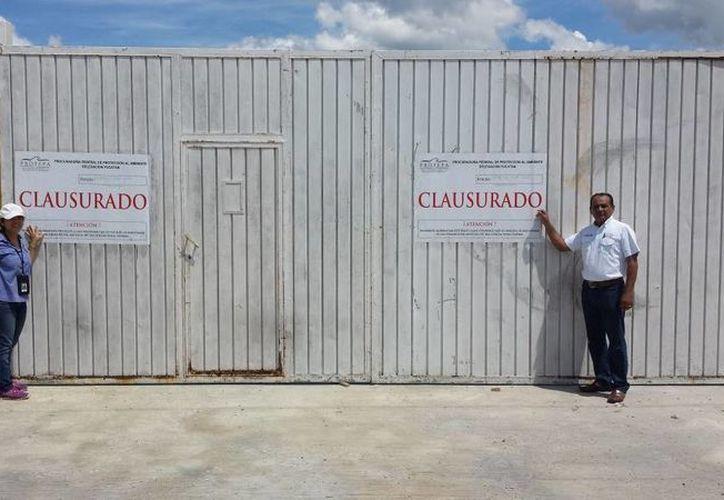 Un terreno en construcción de la Marina fue clausurado por la Profepa en el puerto de Yucalpetén, Progreso. (Fotos: cortesía de Profepa)
