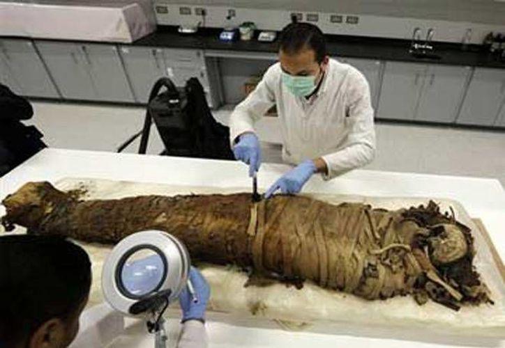 Se cree que las momias fueron desenterradas por excavadores ilegales y las arrojaron a un canal de aguas negras para evitar ser descubiertos. (Fotografía de la agencia AFP, publicada en dailynewsegypt.com)