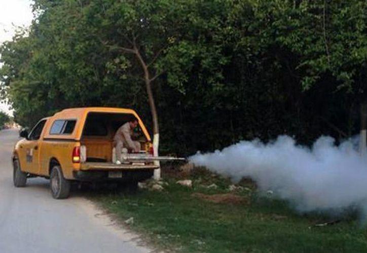 La temporada vacacional, aunada a la de lluvias, obliga a las autoridades sanitarias de Yucatán a reforzar la batalla contra los mosquitos transmisores del Chikungunya, mal del cual hay seis casos sospechosos en el estado. (Archivo/Notimex)