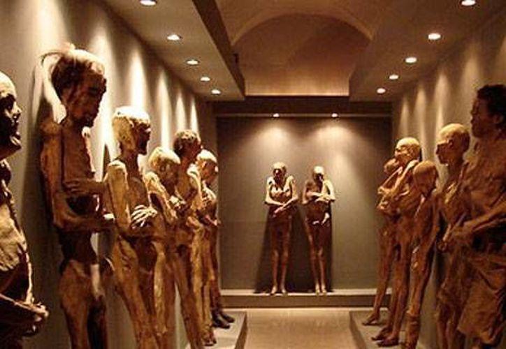 El museo está abierto de  9 de la mañana a 6 de la tarde. (Contexto/Internet)