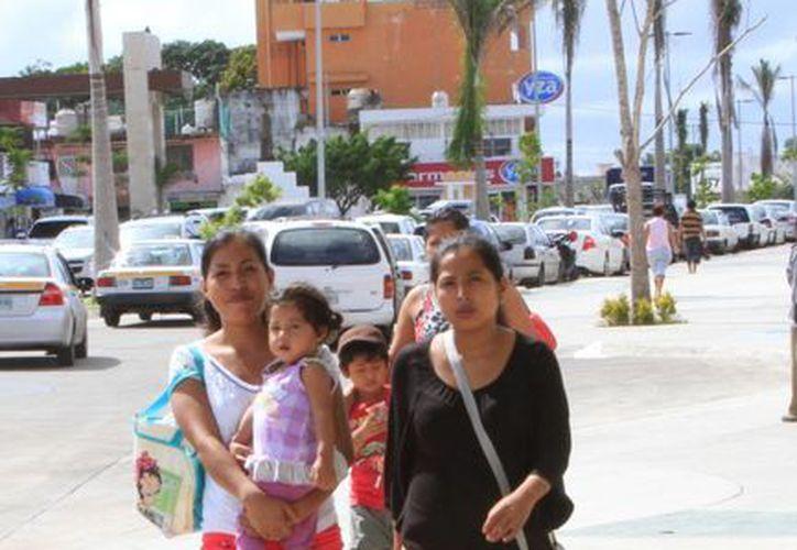 Los seguros fueron entregados en beneficio de 277 personas de Quintana Roo. (Ángel Castilla/SIPSE)