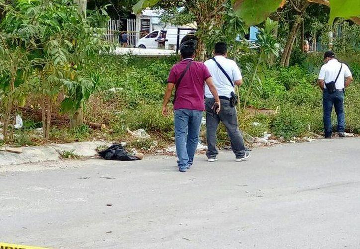 Bolsas con partes de un cuerpo humano fueron encontradas en la Región 259. (Eric Galindo/SIPSE)