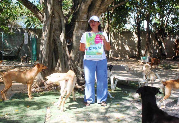 La asociación Acción Canina, de Playa del Carmen, realizará una kermés este 4 de junio. (Daniel Pacheco/SIPSE)