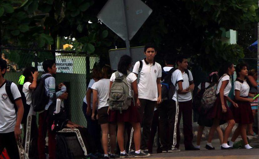 En Yucatán, el porcentaje de estudiantes de educación básica y de educación media superior que resuelven problemas aritméticos con números naturales o decimales, y que resuelven problemas de aplicación de perímetros (13 de cada 100), es menor a la estadística nacional que es de (13.8 de cada 100). (SIPSE)