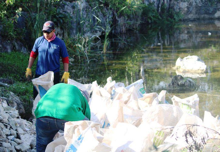 Trabajadores de Calica ayudaron a limpiar el cuerpo de agua. (Octavio Martínez/SIPSE)
