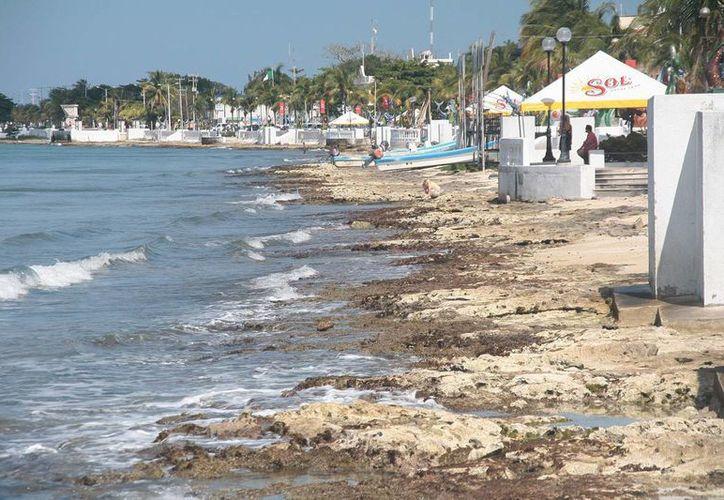 El malecón de Cozumel requiere arena para mejorar su imagen turística. (Julián Miranda/SIPSE)