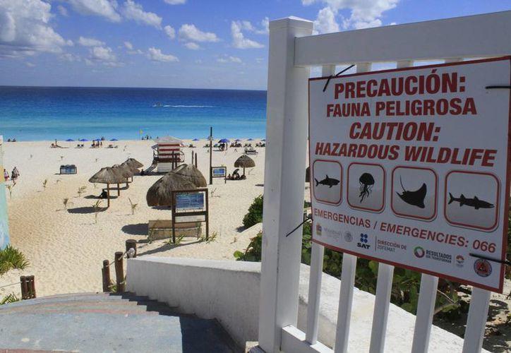 """En uno de los letreros que fue colocado cerca del balcón de El Mirador, es posible visualizar las indicaciones que a la letra dice """"Precaución: Fauna peligrosa"""". (Sergio Orozco/SIPSE)"""