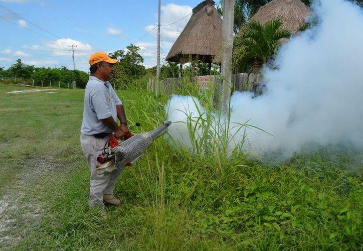 Se realizaron nebulizaciones en predios para combatir la propagación del mosco transmisor del dengue. (Cortesía/SIPSE)