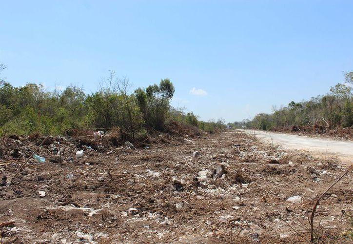 Personal de la Dirección de Ecología instaló señales con las sanciones previstas para quien sea sorprendido tirando basura en los terrenos. (Sara Cahuich/SIPSE)