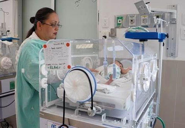 En un hospital del IMSS, en Mérida, nacieron trillizos. Sólo uno de ellos permanece hospitalizado por bajo peso. (Cortesía)