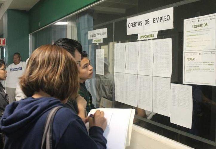 Quintana Roo fue ubicado por el Observatorio Laboral como una de las 10 entidades con mejores sueldos para profesionistas. (Redacción)