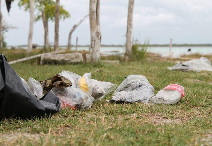 """Las personas que visitan el """"Parque Ecológico Estatal"""", en muchas ocasiones dejan su basura lo que genera contaminación. (Juan Carlos Gómez/SIPSE)"""