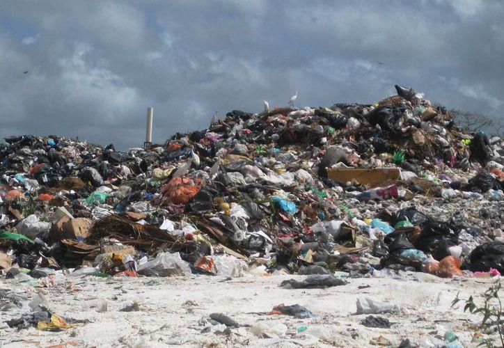 El tiradero compartido por los dos municipios pondría solución al destino final de los residuos sólidos de varias comunidades. (Javier Ortiz/SIPSE)