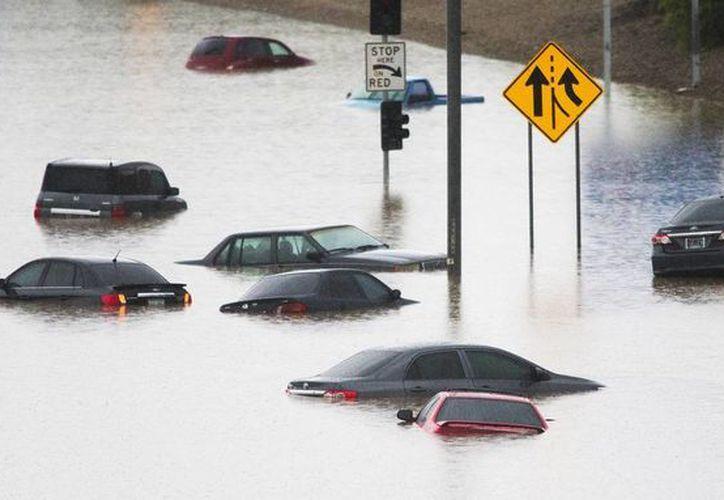 Las lluvias que azotan Phoenix son las peores que se han registrado desde 1895; múltiples zonas de la ciudad están inundadas. (AP)
