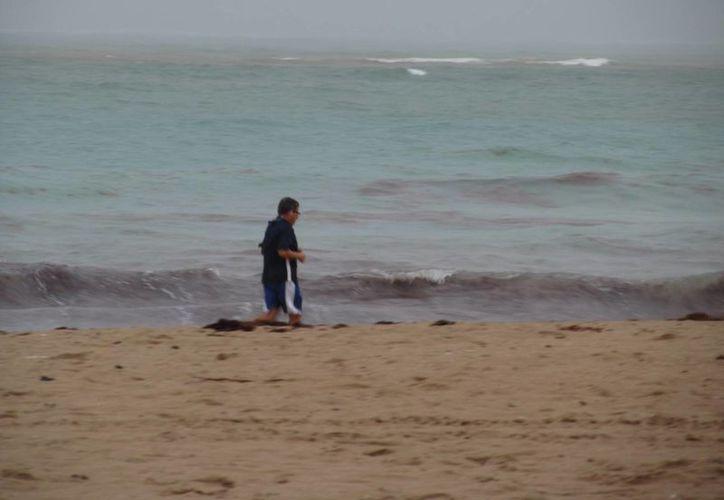 Las posibilidades de que un huracán impacte las costas estadounidenses son de un 28 por ciento. (Archivo/EFE)