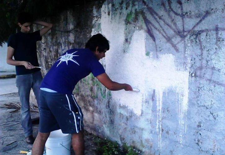Hasta el momento han logrado siete murales en diversos puntos de la ciudad. (Tomás Álvarez/SIPSE)